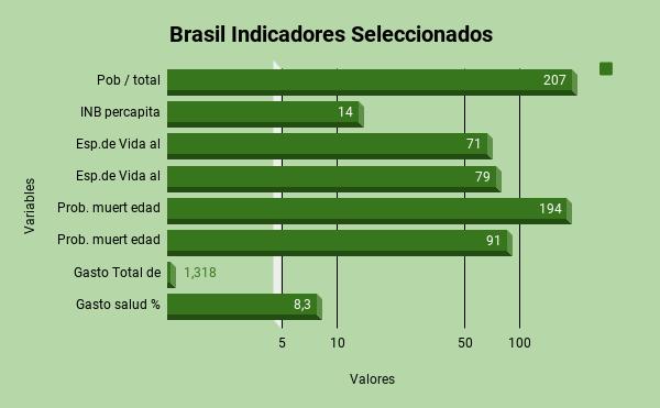 _ Brasil Indicadores Seleccionadoscorreccion
