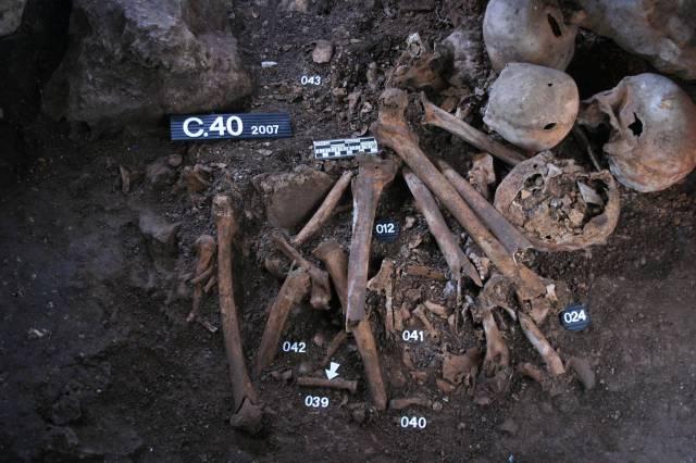 restos humanos secuencia adn