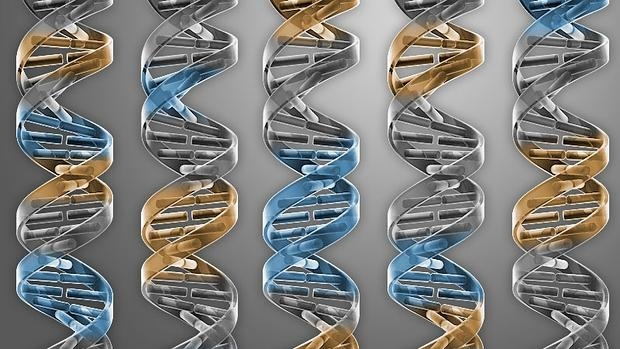 science-vida-artificial--620x349
