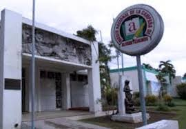 museoalfabetizacion